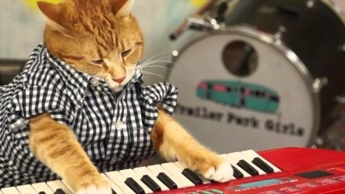 Keyboard leren spelen